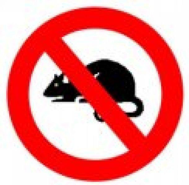 Gli ultrasuoni per i topi, come tenere lontani i roditori