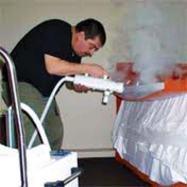 Cimici dei letti insetticida metodo tradizionale - Cimici da letto vestiti ...