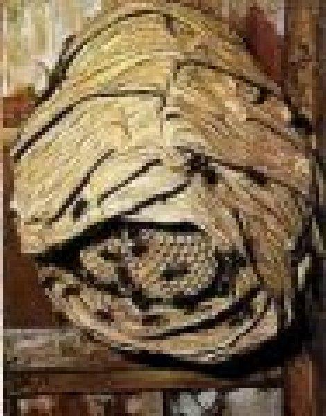 prevenire un nido di calabroni, eliminarlo con accortezza